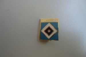 Hamburger SV Schriftzug + Raute hellblau
