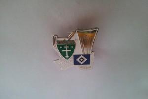 UEFA Cup 2008-2009 SK Zilina-HSV