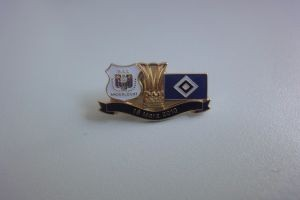 UEFA Europa League 2009-2010 RSC Anderlecht-HSV